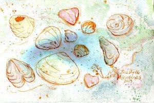Seashell Valentine India Ink
