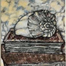Conch and books, charcoal and conte crayon on canvase