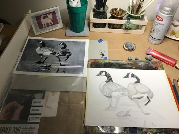 Sketch of ducks