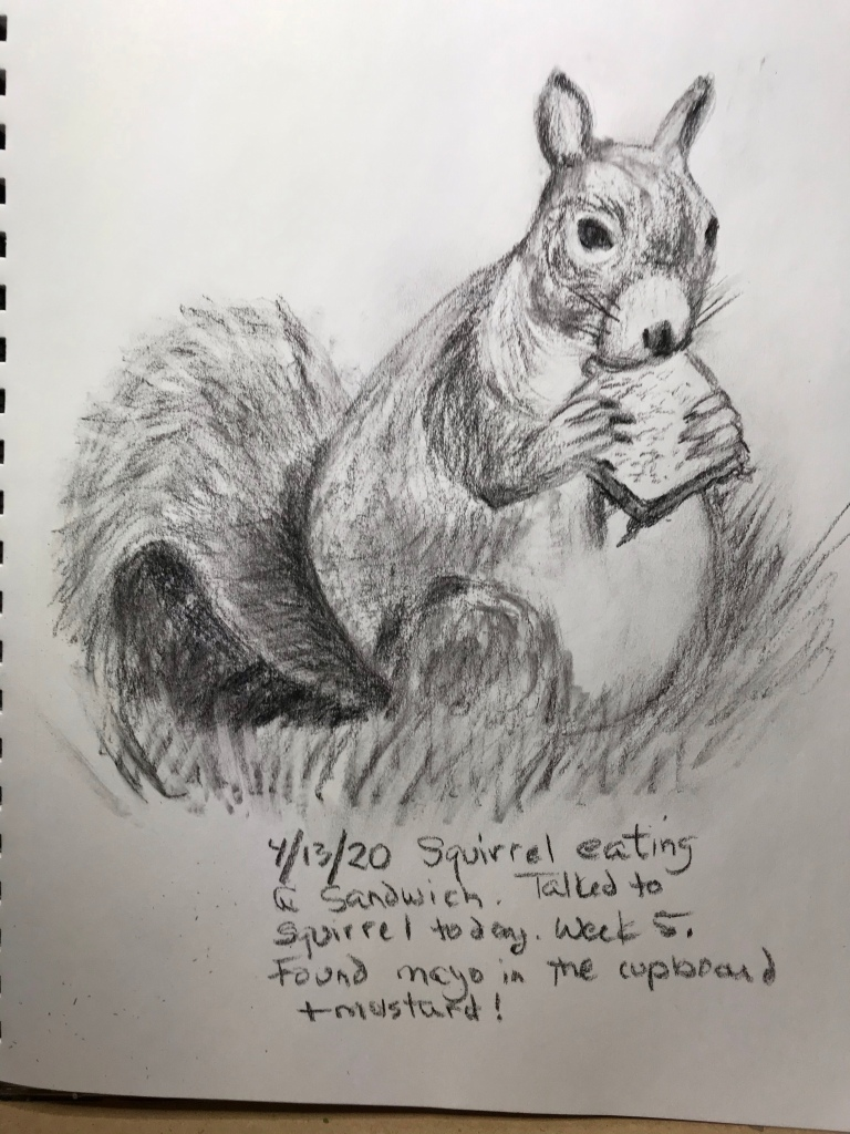 Squirrel eating a sandwich, drawing