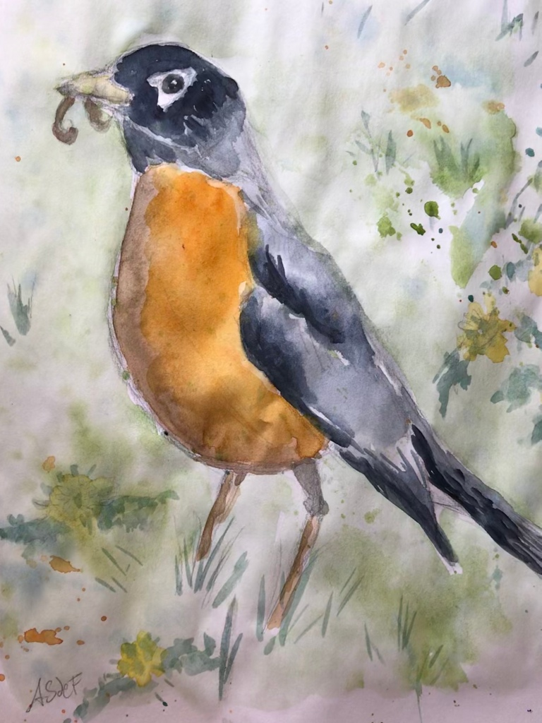 Robin eating a worm, water color painting