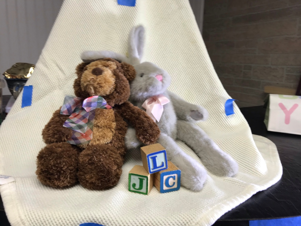 Teddy Bear and toy bunny with blocks